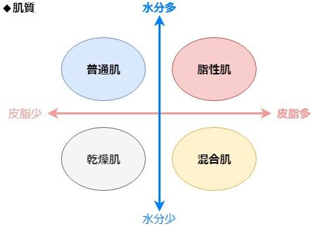 肌質分類図